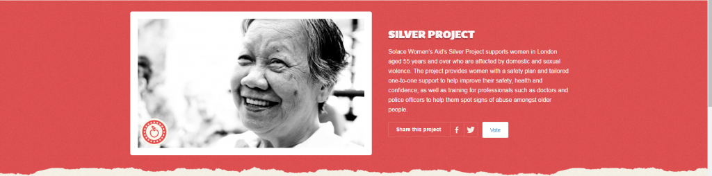 Solace Women's Aid  Silver Project