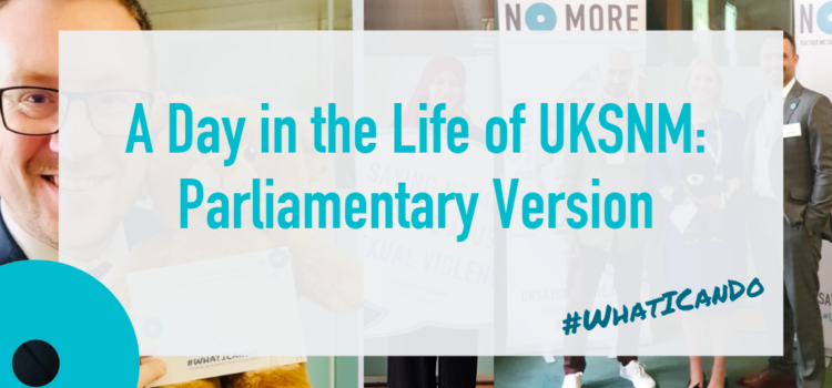 A Day in the Life of UKSNM: Parliamentary Version